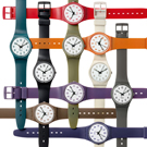 Swatch Basic-Setup GB245 - 2010 Spring Summer Collection