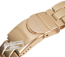Swatch Full-Blooded-Caramel SVCK4047AG - 2010 Fall Winter Collection