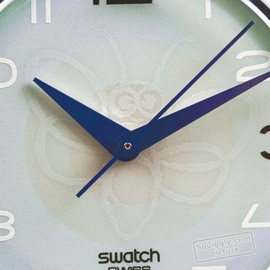 Fall Winter Collection Swatch. Swatch Fly By Night (Loomi) Watch
